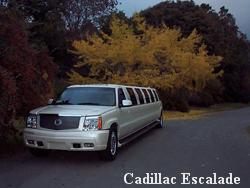 Byrd Limousine Service | Claremont, CA | Event Limousine | Photo #12