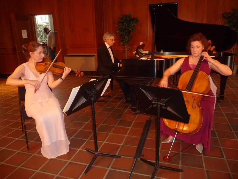 Alicia Randisi, Trilllium; a piano trio - Classical Cellist - Knoxville, TN