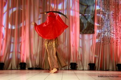 Dinner And A Dance | Lodi, NJ | Belly Dancer | Photo #8