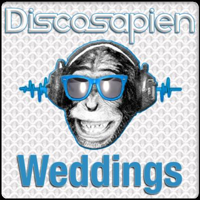 Discosapien | Denver, CO | Event DJ | Photo #6
