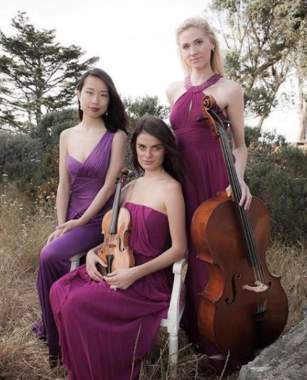 Empress Strings  - Acoustic Trio - Los Angeles, CA