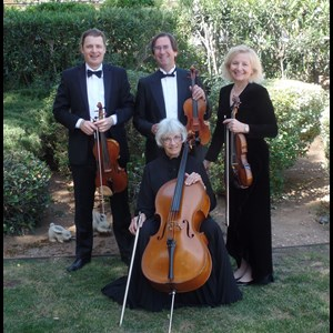 Orange Classical Quartet | Zene Strings