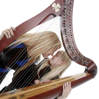 Tara Carway Hooker | Pearl River, NY | Harp | Photo #9