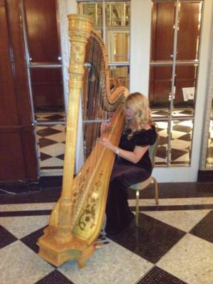 Tara Carway Hooker | Pearl River, NY | Harp | Photo #1