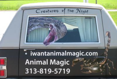 Animal Magic | Belleville, MI | Animals For Parties | Photo #12