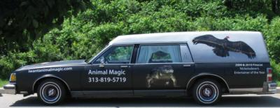 Animal Magic | Belleville, MI | Animals For Parties | Photo #9