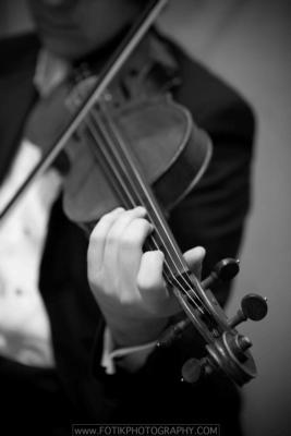 Armonia Music Inc. | Miami, FL | String Quartet | Photo #1