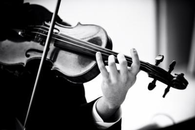 Armonia Music Inc. | Miami, FL | String Quartet | Photo #14