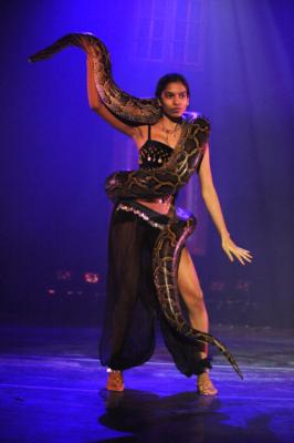 Cirque-Tacular Entertainment | New York, NY | Circus Act | Photo #7
