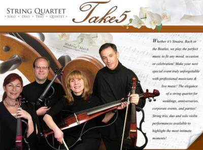 Take5strings | Atlanta, GA | String Quartet | Photo #2