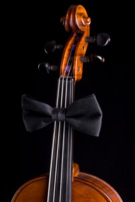Columbus Musicians, Llc | Columbus, OH | Classical String Quartet | Photo #1
