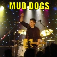 Mud Dogs Band - #1 Top Rated Variety Dance Band | Minneapolis, MN | Cover Band | Photo #1