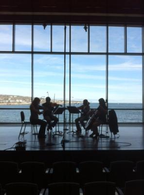 New England String Quartet | Boston, MA | String Quartet | Photo #17