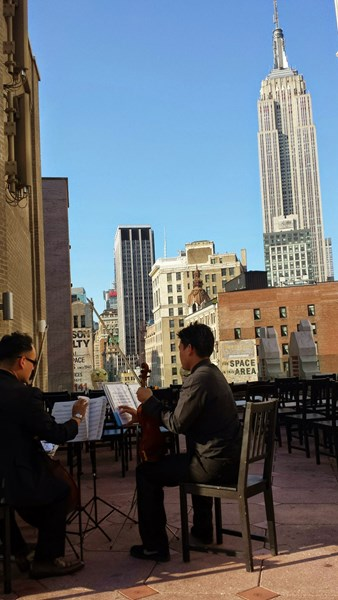 Castle Chamber Players - String Quartet - New York City, NY