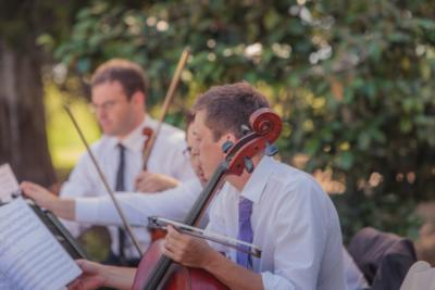 Classical Charleston | Charleston, SC | Classical String Quartet | Photo #16