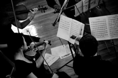 Iconiq String Quartet | New York, NY | Classical String Quartet | Photo #1