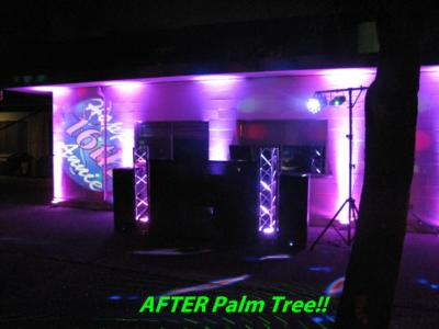 Palm Tree Sound Productions | Sacramento, CA | DJ | Photo #18