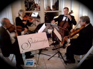 Shilakowsky String Ensembles | South Easton, MA | String Quartet | Photo #3