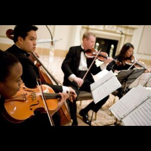 Lake Forest Chamber Music Trio | Accolade Musicians (Quartet, Trio, Or Duo)