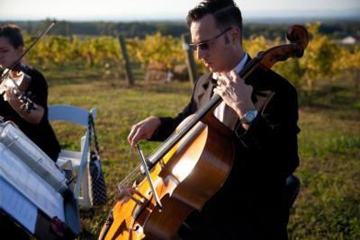 Steve Holman | Purlear, NC | Classical Cello | Photo #2