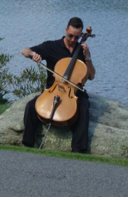 Steve Holman | Purlear, NC | Classical Cello | Photo #1