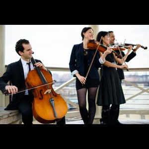 Darlington String Quartet | Elegance String Quartet