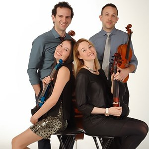 Wilmington Top 40 Trio | Elegance String Quartet