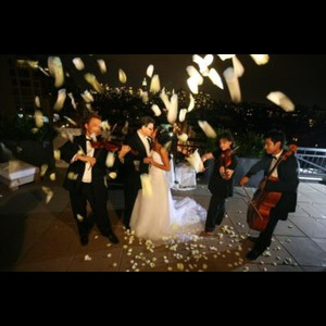 Art-Strings Entertainment - Classical Trio - New York, NY