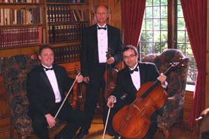 Art-Strings Entertainment | New York, NY | Classical Trio | Photo #5