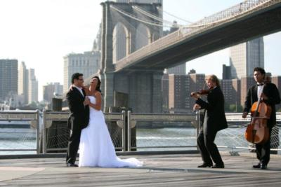 Art-Strings Entertainment | New York, NY | Classical Trio | Photo #2