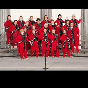 Northfield A Cappella Group | Spring Valley Chorus