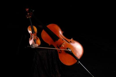 Loran Strings | Fort Collins, CO | Classical Violin | Photo #1