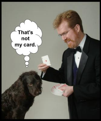 Mike Rose Magic | Phoenix, MD | Magician | Photo #5