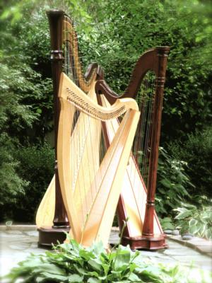 Mary Dicken | Newburgh, IN | Harp | Photo #10