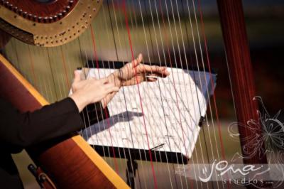 Mary Dicken | Newburgh, IN | Harp | Photo #2