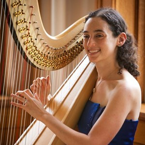 Austin, TX Harpist | Lisa Lamb - Silver Wings Music