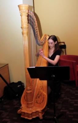 Lisa Lamb - Silver Wings Music | Austin, TX | Harp | Photo #9