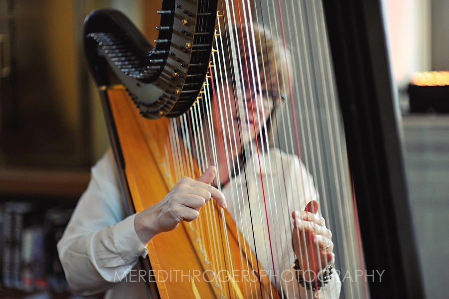 Beth Paré, Harpist - Harpist - South Bend, IN