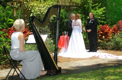 Sara Sterling Ansley | Tampa, FL | Harp | Photo #2