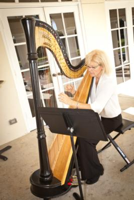Sara Sterling Ansley | Tampa, FL | Harp | Photo #1
