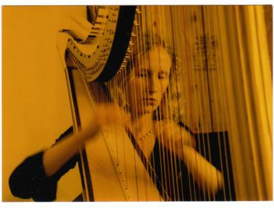 Heather Donovan, harpist and pianist | Maple Valley, WA | Harp | Photo #1