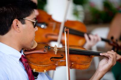 Chesapeake Strings | Baltimore, MD | Classical Trio | Photo #9