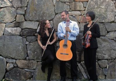 Con Brio Trio and Duo | Boston, MA | Classical Trio | Photo #14