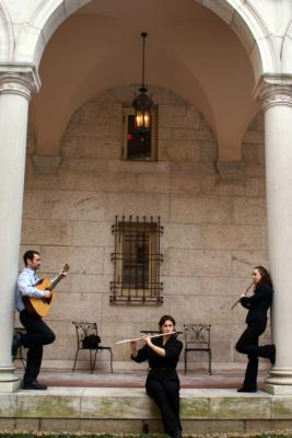 Con Brio Trio and Duo | Boston, MA | Classical Trio | Photo #5