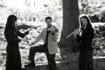 diSogno String Quartet & Ensemble | Greenville, SC | String Quartet | Photo #2