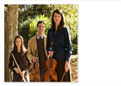 diSogno String Quartet & Ensemble | Greenville, SC | String Quartet | Photo #3