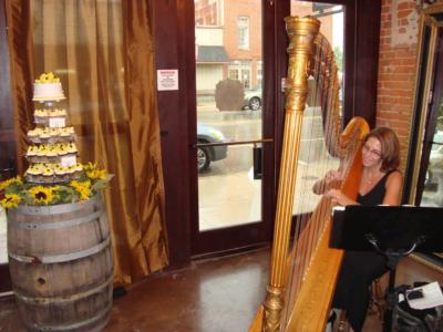 Meg Rodgers, Harpist | Saint Joseph, MI | Harp | Photo #2