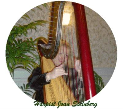 Joan Steinberg Harpist | Phila, PA | Harp | Photo #1