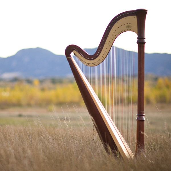 Harpist - Mary Keener - Harpist - Denver, CO