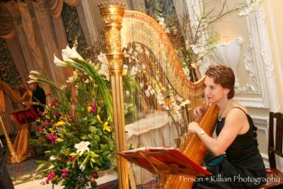 The Gilded Harps | Sudbury, MA | Harp | Photo #1
